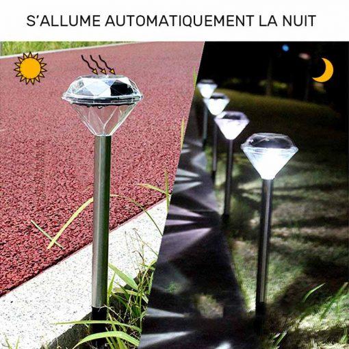 lampe solaire décoration a planter jardin