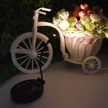 Lampe solaire pour plante extérieur