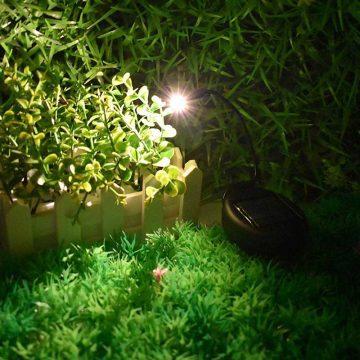 Lampe solaire pour plante flexible