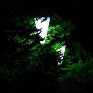 lanterne solaire pour arbre extérieur