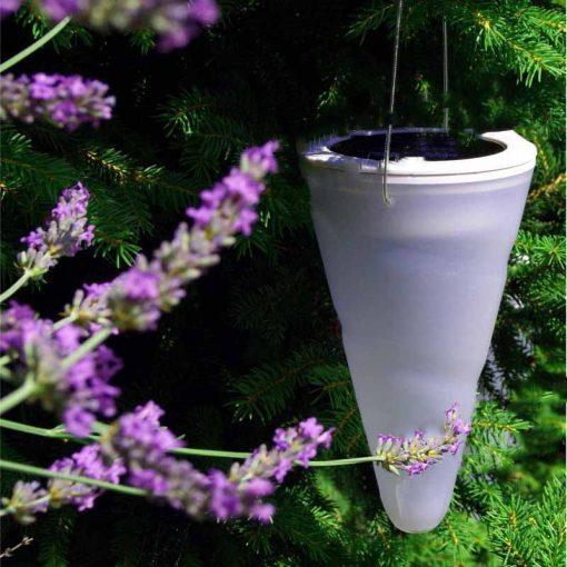 lanterne solaire pour arbre pas cher