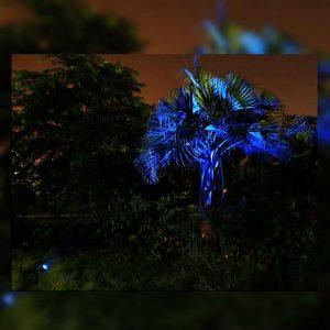 spot solaire bleu jardin
