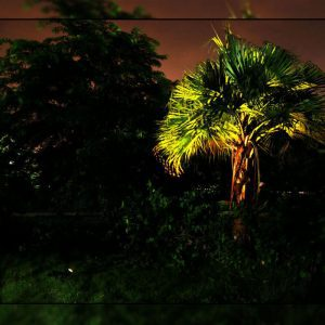 spot solaire lumière chaude extérieur
