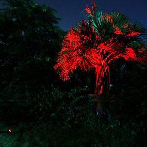 spot solaire rouge jardin