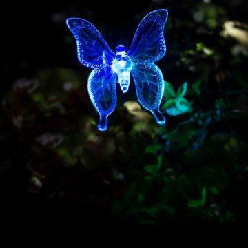 Lampe solaire papillon pas cher