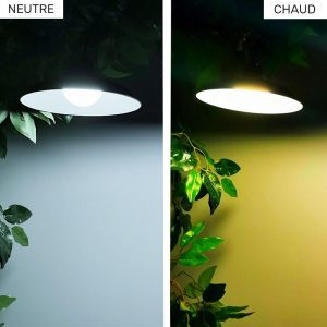 lampe solaire tonnelle jardin