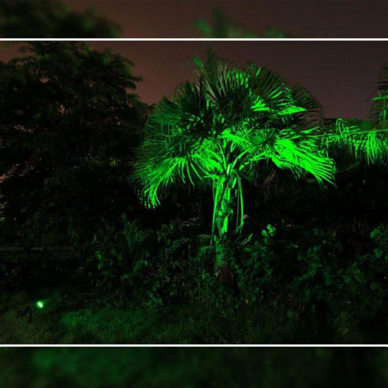 spot solaire vert jardin nuit