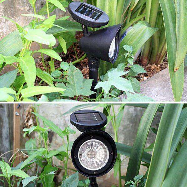 petit spot solaire jardin exterieur