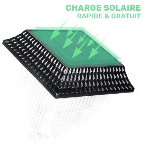 balise led solaire jardin puissante
