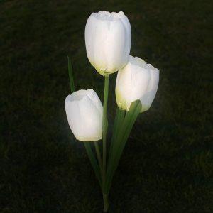 lampe solaire tulipe jardin