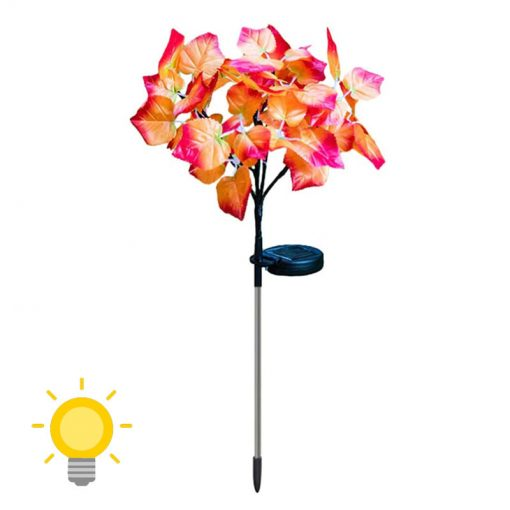 fleurs solaire jardin