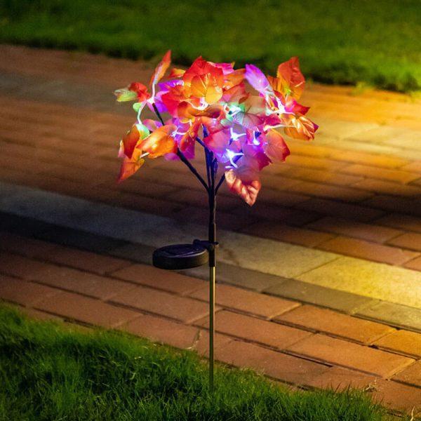 fleurs solaire jardin exterieur