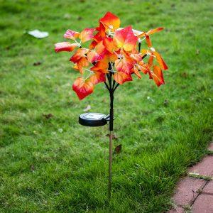 fleurs solaire jardin sur tige
