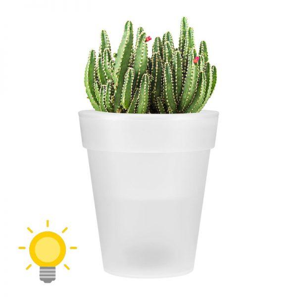 pot de fleur solaire
