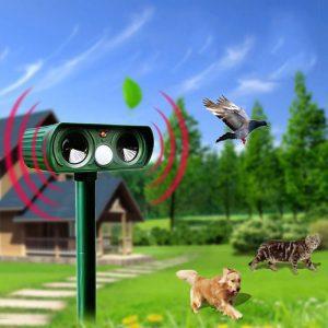 repulsif solaire chat exterieur